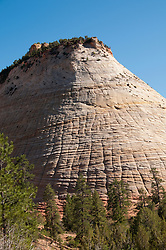 USA Utah, Checkerboard Mesa in Zion National Park.
