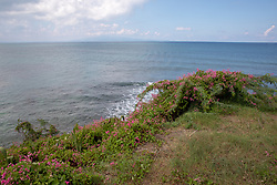 View From Faro Puerto Mulas