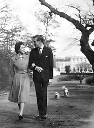 The newly-engaged Princess Margaret and photographer Antony Armstrong-Jones, strolling in the grounds of Royal Lodge, Windsor, where they are spending the weekend with the Queen Mother. This is one of the first pictures made of the couple after the announcement of their engagement. Princess Margaret wears a lilac dress with loose-fitting jacket, two strings of pearls and a gold watch. Her fiancé's suit is a dark grey pin-stripe.