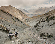 """Paul Salopek leaving Sarhad, the last village in the Wakhan, to climb across the Daliz Pass (4260m). Guiding and photographing Paul Salopek while trekking with 2 donkeys across the """"Roof of the World"""", through the Afghan Pamir and Hindukush mountains, into Pakistan and the Karakoram mountains of the Greater Western Himalaya. Wakhan Corridor."""