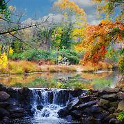 The colors of late fall at Duke Farms in Hillsborough, NJ