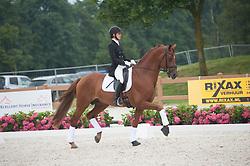 Iversen Mette Hoermann, DEN, Elmegaardens Rivaldi<br /> World Championship Young Dressage Horses <br /> Ermelo 2016<br /> © Hippo Foto - Leanjo De Koster<br /> 29/07/16