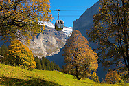 Alpine pastures with cable car- Swiss Alps, Grindelwald, Switzerland .<br /> <br /> Visit our SWITZERLAND  & ALPS PHOTO COLLECTIONS for more  photos  to browse of  download or buy as prints https://funkystock.photoshelter.com/gallery-collection/Pictures-Images-of-Switzerland-Photos-of-Swiss-Alps-Landmark-Sites/C0000DPgRJMSrQ3U