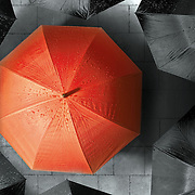 A solitary red umbrella standing out against a sea of black umbrellas on a grey, wet rainy day.