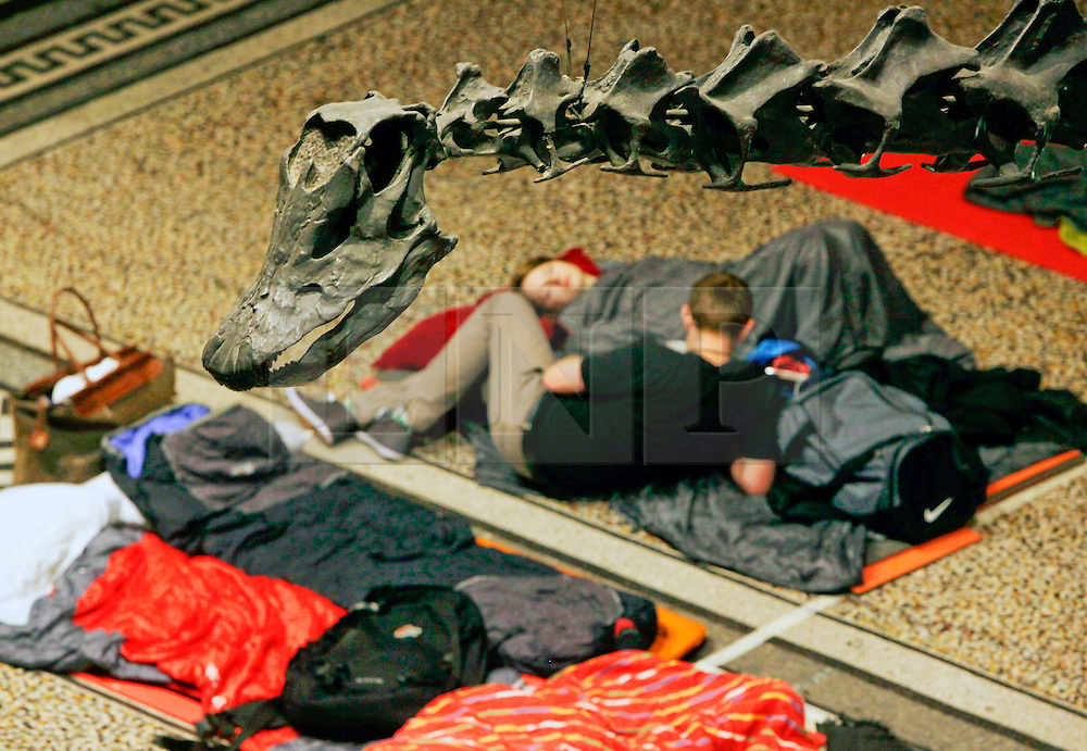 Natural History Museum, London, UK. 17/01/2014<br /> A couple settle down for the night underneath the Diplodocus dinosaur exhibit, in the main hall of the Natural History Museum in London. The 'Dino Snore' sleepover event allowed paying adults to spend the night inside the museum, where people could sleep among the dinosaur exhibits along with activities such as eating edible bugs and a lecture on the sex lives of insects.<br /> Photo: Anna Branthwaite/LNP