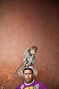 A street performer with a small monkey at the Djemaa el Fna in the medina of Marrakech, Morocco