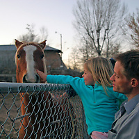North America, USA, New Mexico, Chimayo. A young girl greets a farm horse near Chimayo in New Mexico.
