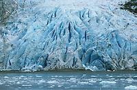 Glacier at the edge of ocean Kenai Peninsula Alaska USA