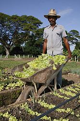 Man with wheelbarrow working on Organiponico 14 de junio; Pinar del Rio; Cuba,
