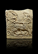 Hittite relief sculpted orthostat stone panel of Long Wall Basalt, Karkamıs, (Kargamıs), Carchemish (Karkemish), 900 - 700 BC. Anatolian Civilizations Museum, Ankara, Turkey.<br /> <br /> Chariot. One of the two figures in the chariot holds the horse's headstall while the other throws arrows. There is a naked enemy with an arrow in his hip lying face down under the horse's feet. It is thought that this figure is depicted smaller than the other figures since it is an enemy soldier. The tower part of the orthostat is decorated with braiding motifs.<br /> <br /> On a black background. .<br />  <br /> If you prefer to buy from our ALAMY STOCK LIBRARY page at https://www.alamy.com/portfolio/paul-williams-funkystock/hittite-art-antiquities.html  - Type  Karkamıs in LOWER SEARCH WITHIN GALLERY box. Refine search by adding background colour, place, museum etc.<br /> <br /> Visit our HITTITE PHOTO COLLECTIONS for more photos to download or buy as wall art prints https://funkystock.photoshelter.com/gallery-collection/The-Hittites-Art-Artefacts-Antiquities-Historic-Sites-Pictures-Images-of/C0000NUBSMhSc3Oo