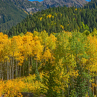 Fall colors glow in the mountains near Crystal, Colorado.