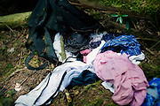 A bag and clothes lie scattered among the undergrowth in Aokigahara Jukai, better known as the Mt. Fuji suicide forest, in Yamanashi Prefecture west of Tokyo, Japan. .