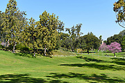 Aldrich Park on the Campus of the University of California Irvine, on a Beautiful Spring Day