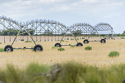 February 5, 2015 - Cape Town, Western Cape, South Africa - Irrigation System On A Farm; Cape Town, Western Cape, South Africa (Credit Image: © Remsberg Inc/Design Pics via ZUMA Wire)