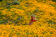 Feet wearing red roller skates emerge out of the explosion of poppies on a California hillside.