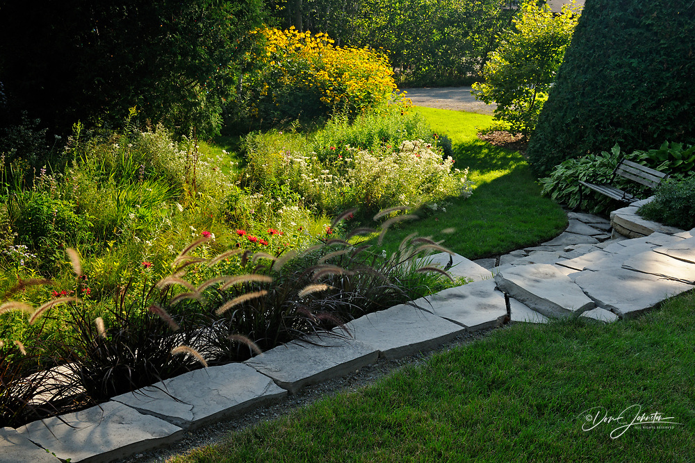 Garden wall with fountain grasses overlooking naturalized meadow, Greater Sudbury, Ontario, Canada