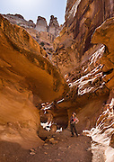 A hiker explores the beautiful slot of Crack Canyon on public federal BLM land in San Rafael Swell, near Goblin Valley State Park, Utah, USA. As part of the Colorado Plateau, the San Rafael Swell is a giant dome-shaped anticline of sandstone, shale, and limestone (160-175 million years old) that was pushed up during the Paleocene Laramide Orogeny 60-40 million years ago. Since then, infrequent but powerful flash floods have eroded the sedimentary rocks into valleys, canyons, gorges, mesas, and buttes. The Bureau of Land Management (BLM) is an agency within the United States Department of the Interior that administers American public lands.