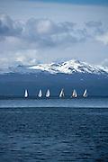 Sailboat race, Ushuaia, Patagonia, Argentina