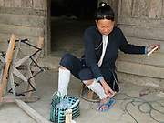 A Lanten ethnic minority woman spinning cotton, Ban Pakha, Luang Namtha province, Lao PDR. The Lanten or Yao Mun are a small but distinctive group of the Yao ethnic minority residing in northern Laos, Vietnam and China.  Maintaining a strong cultural identity, they are easily recognised by their hand woven, indigo dyed attire. Unlike many other ethnic groups who have relinquished their traditional dress, each Mun family still cultivates cotton and indigo for spinning, weaving, dyeing and sewing into clothing. One of the most ethnically diverse countries in Southeast Asia, Laos has 49 officially recognised ethnic groups although there are many more self-identified and sub groups. These groups are distinguished by their own customs, beliefs and rituals.