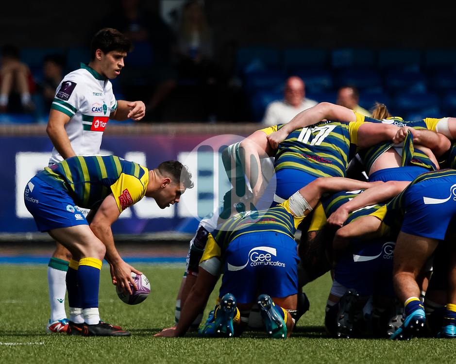 Cardiff Blues' Tomos Williams puts in to the scrum<br /> <br /> Photographer Simon King/Replay Images<br /> <br /> European Rugby Challenge Cup - Semi Final - Cardiff Blues v Pau - Saturday 21st April 2018 - Cardiff Arms Park - Cardiff<br /> <br /> World Copyright © Replay Images . All rights reserved. info@replayimages.co.uk - http://replayimages.co.uk