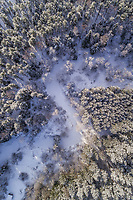 Aerial view of the snowy forest in Naage in Estonia.