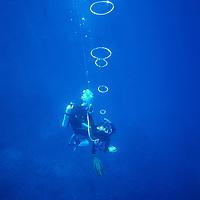 French Polynesia Rangiroa Atoll Tuamotu Archipelago divers outside of lagoon near Avatoru Pass, diving making rings with his air supply