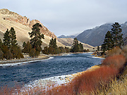 Ponderosa pines, junipers and willows along the Salmon River south of Elk Bend, Idaho