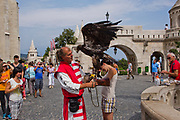Falconer with bird of prey at Hosok Tere (Heroes Square), Budapest, Hungary