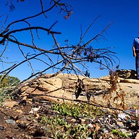 101514       Cable Hoover<br /> <br /> Gallup City Councilor Cecil Garcia surveys the area of open space near Second Street and Nizhoni Boulevard Thursday. Garcia says he'd like to see the area cleaned up and used for recreation.