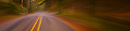 an abstract image of a road in the forest panorama