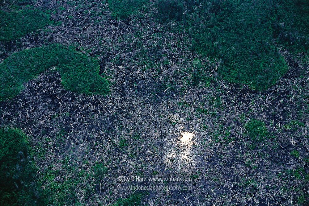 Clear cut rainforest, Lake Jempang, Mahakam River, East Kalimantan, Indonesia.