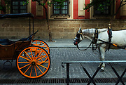 Cart before the horse, Seville, Andalucia