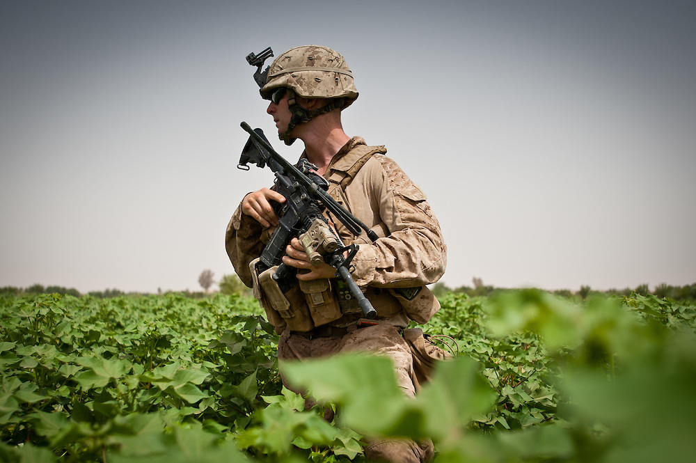 Lieutenant Kevin Gaughan stands in a beanfield during a patrol in Marjah. The men from Lima Company, 3/6 Marines, avoided the pathways as much as possible because of the threat of improvised explosive devices.