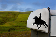 Horse riding in Southern Iceland. <br /> Fossnes farm. Horse box.
