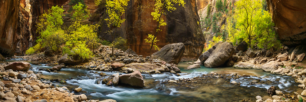 The Virgin River carves a sharp bend in the stone canyon walls in The Narrows of Zion National Park in Utah.