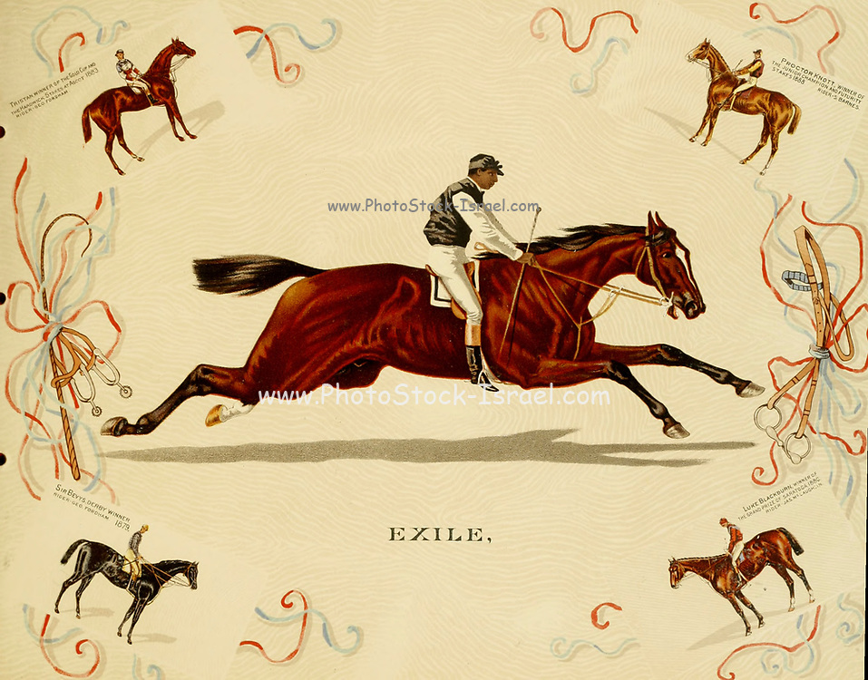 Exile Thoroughbred racehorse from the ' Album of celebrated American and English running horses ' by Kinney Bros Published in New Your in 1888 By Kinney Brothers to advance the sales of their cigarette brands. The Kinney Tobacco Company was an American cigarette manufacturing firm that created the Sweet Caporal cigarette brand and promoted it with collectible trading cards. Being a leading cigarette manufacturer of the 1870-1880s, it merged in 1890 into the American Tobacco Company.