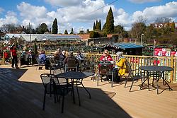 Sping Time at Almondsbury Garden Centre - Mandatory byline: Rogan Thomson/JMP - 31/03/2016 - PR - Almondsbury Garden Centre - Bristol, England.