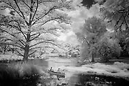 2 people canoeing on a creek in Wimberley,Texas