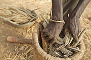 A woman breaks millet cobs into a wooden mortar as she prepares to pound them into flour in the village of Ubilinu, Est region, Burkina Faso on Thursday March 29, 2012.