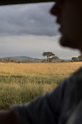 Side view of a safari car driver and savannah landscape in the background, Serengeti National Park, Tanzania