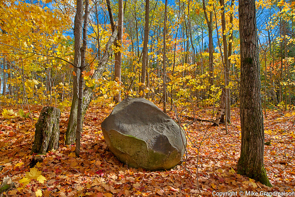 Rock in hardwood forest in autumn near Parry Sound.<br />Horseshoe Lake<br />Ontario<br />Canada