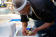 A worker at Tsukiji market prepares giant mussels for sale. Tokyo, Japan 2013