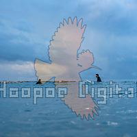 2020-12-17 Dolphinarium Beach, TLV