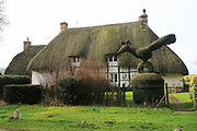 Topiary hedging thatched country cottage, Cadley, near Marlborough, Wiltshire, England, UK