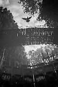 April 2015. Paris. A pigeon fliying above the Saint-Martin's channel.