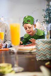 Little boy with cake in costume celebrating birthday