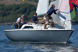 Sailing - SCOTLAND  - 25th May 2018<br /> <br /> Opening days racing the Scottish Series 2018, organised by the  Clyde Cruising Club, with racing on Loch Fyne from 25th-28th May 2018<br /> <br /> GBR8145N, Scruples , Chris Tait, Helensburgh SC<br /> <br /> Credit : Marc Turner<br /> <br /> Event is supported by Helly Hansen, Luddon, Silvers Marine, Tunnocks, Hempel and Argyll & Bute Council along with Bowmore, The Botanist and The Botanist