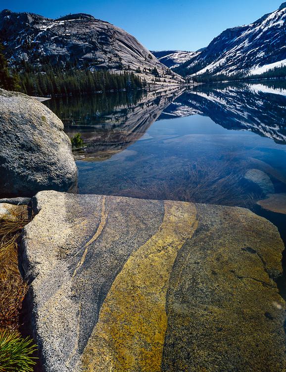 Teniya Lake, summer, Yosemite National Park, California, USA