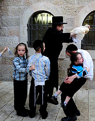 60469876 <br /> An Ultra-Orthodox Jew performs the Kaparot ceremony in Jerusalem on Sept. 12, 2013 ahead of Yom Kippur, the holiest day of the Jewish calendar, which begins on Sept 13 this year. <br /> Jerusalem, Israel, Thursday September 12, 2013.<br /> Picture by imago / i-Images<br /> UK ONLY