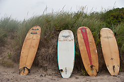 four surfboards leaning against a beach dune in Montauk,NY